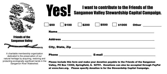 FOSV_Donation_Form