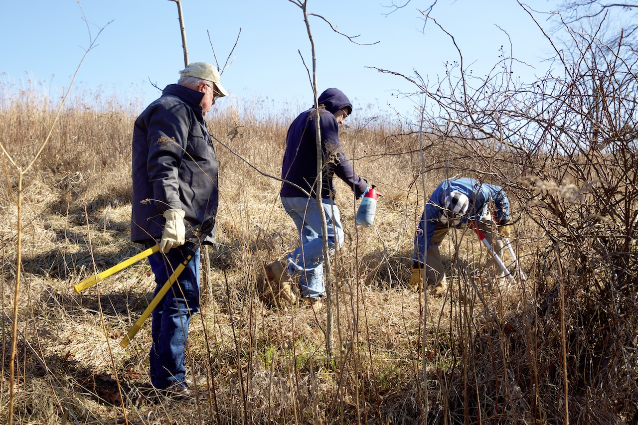 Volunteers hold tools, prepare to spray herbicide, on hillside covered with prairie grass.